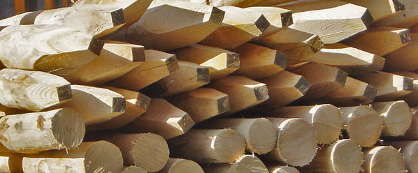 kastanienpf hle die zaunfabrik natur wir die zaunfabrik natur bieten ideen zu den themen tore. Black Bedroom Furniture Sets. Home Design Ideas