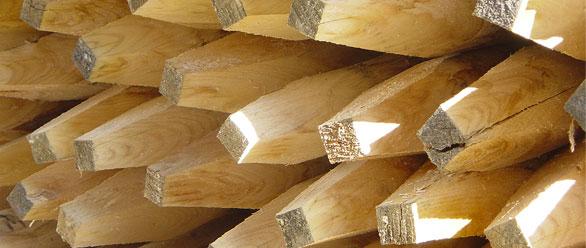 Kastanienpf hle die zaunfabrik natur wir die zaunfabrik - Zaunfabrik natur de ...